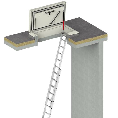 Flachdachausstieg mit Leiter